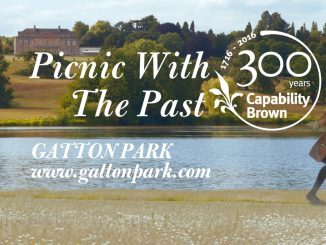 picnic with the past 28 and 29 august 2016 - image 2